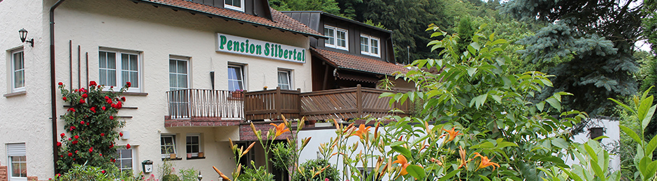 Pension Silbertal